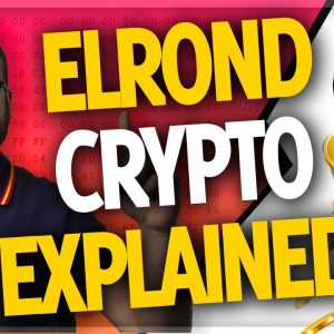 Elrond eGLD is exploding in 2021! (will it be a top 10 crypto?) // Beniamin Mincu Interview