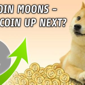 Dogecoin Rallies | Is Litecoin Next?