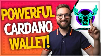 The Cardano wallet Gero will be CRITICAL to adoption! (NEW features announced!)